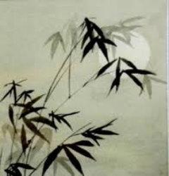 yueguangxiadefengweizhu