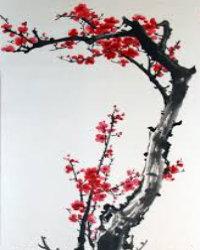 dizi-huaerweishenmezheyanghong